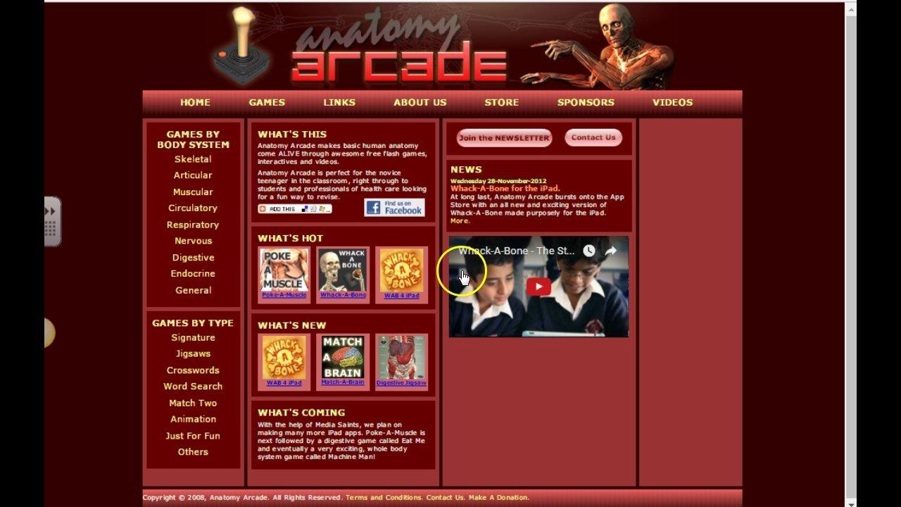 Anatomy Arcade: Poke-A-Muscle Demo